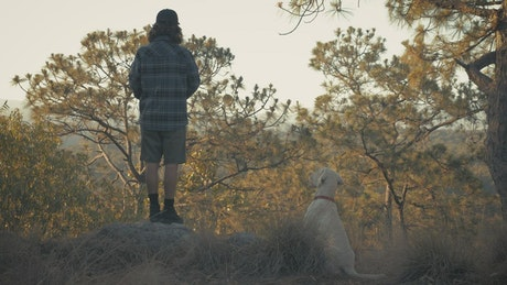 森林里与狗嬉戏得人