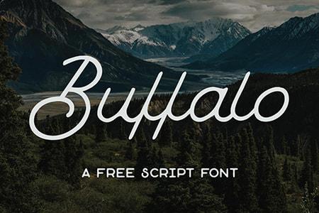 Buffalo手写感品牌标志字体