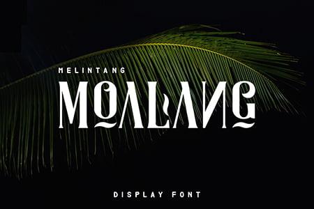 Moalang 艺术装饰曲线字体